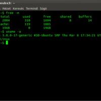 Ubuntu 11.10 119MB RAM