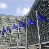 Az Európai Bizottság Versenypolitikai Főigazgatóságának határozata a Paks II. projektről