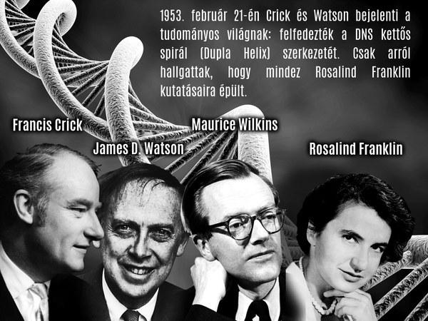 """Az a """"hülye tetranukleotid"""" - vagyis a DNS felfedezése"""