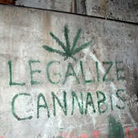 Ne olvasd el, mert drogos leszel!