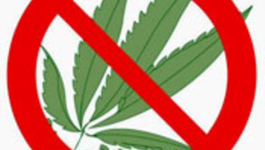 A kenderlevél betiltásától nem lesz kevesebb fűszívó