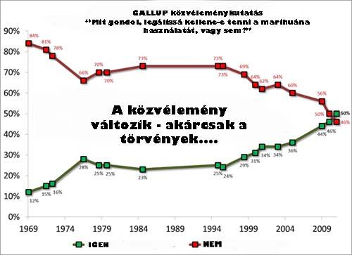 gallupsmall_1.jpg