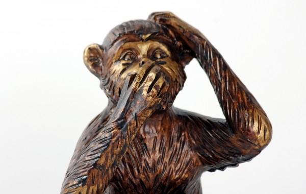 monkey-do-not-speak-symbol-silence-mute-fig.jpg