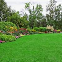4+1 tipp a környezettudatos kertöntözésre!