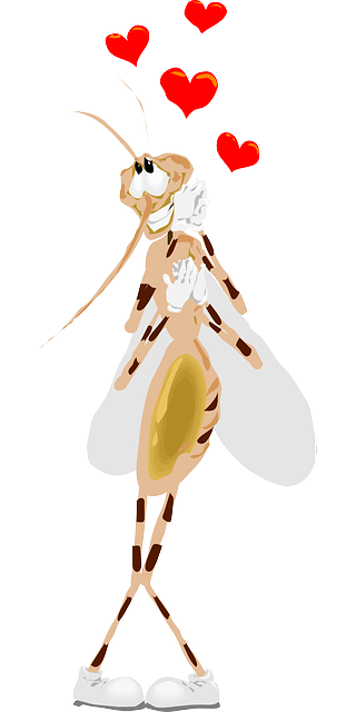 mosquito-48306_640.png