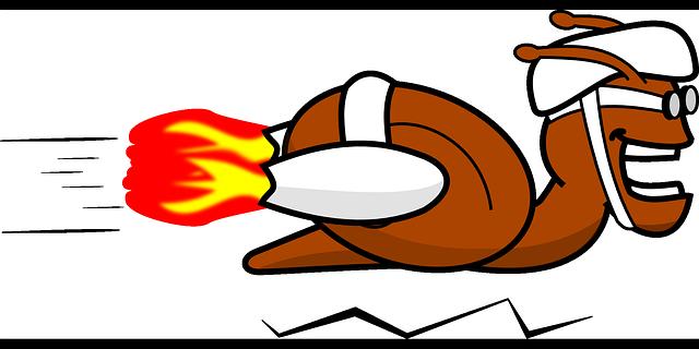 snail-151802_640.png