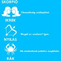 Napi Párszavas Az Para! Horoszkóp