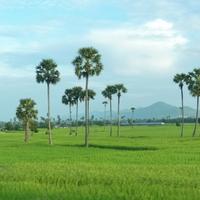 Kambodzsa - tengerpart
