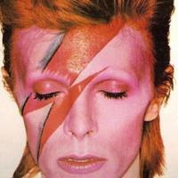 Sziget: hommage á David Bowie