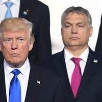 Megkezdődött Orbán Viktor fordulata klíma- és Trump-ügyben