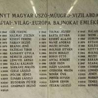 Elhunyt a magyar úszó-, műugró- és vízilabdasport