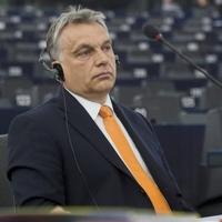 Orbán maga írta alá, hogy a kormányzati propaganda hazudik