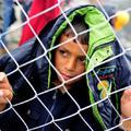 A menekült gyerekeket bezárják Aszódra, Mészáros Lőrinc megkaphatja a fóti kastélyt