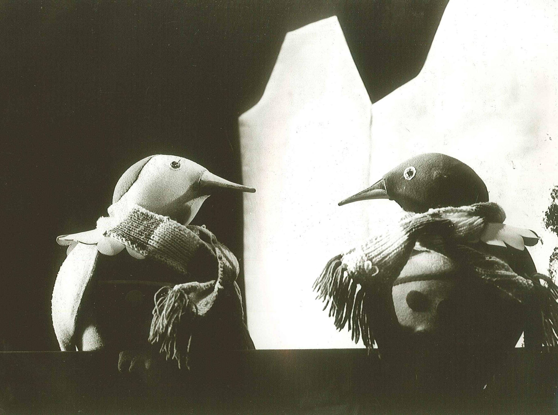 A két kicsi pingvin - 1977