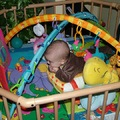 4 hónapos baba fejlődése