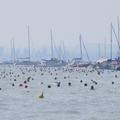 A Balatont úszni át