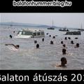 Balaton átúszás 2012