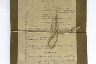 190 éves húsevő növény a Balatoni Múzeumban