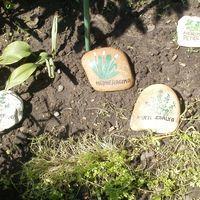 Fűszer-jelölő-kövek