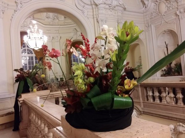 Nyerj orchidea kiállítás belépőjegyeket!