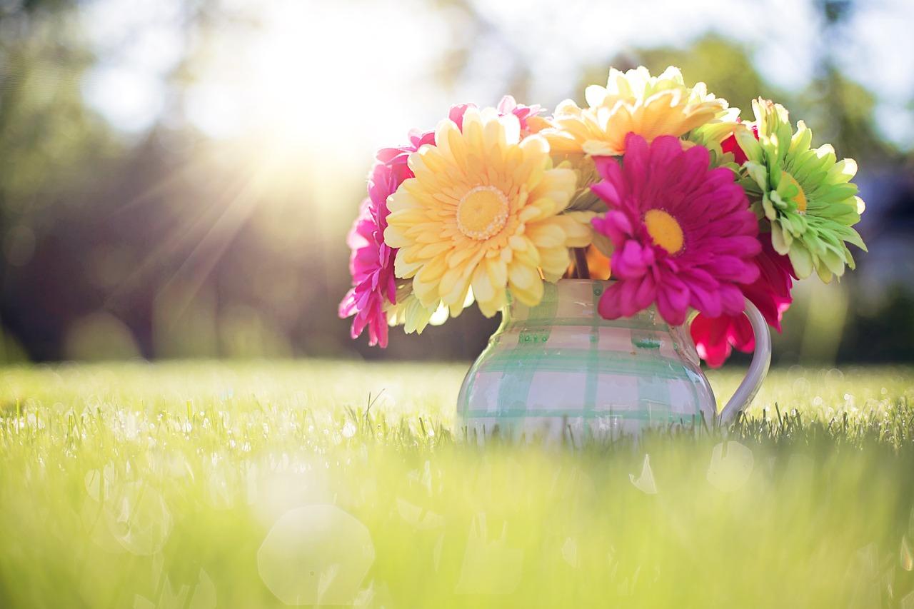 flowers-in-pitcher-796516_1280.jpg