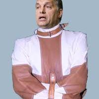 Orbán Viktor! Vizsgált már orvos? Miért gondolod bármit megtehetsz?