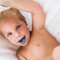 Kék nyelv, kék csempe, kék szem