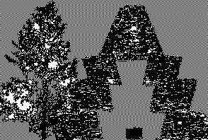 vereckei_ff.jpg