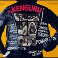 K.O.-val győzött: A kenguru