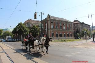 Ingyen látogatható programok Bécsben - december
