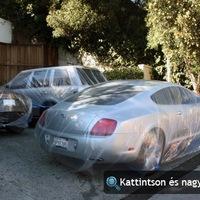 Paris Hilton festőnejlonnal védi autóit