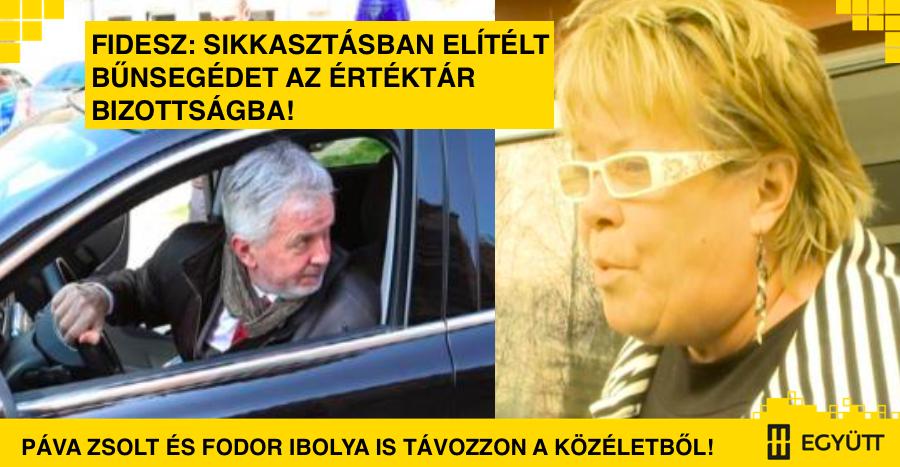 pava_fodor.png