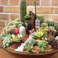 Növénytársítások minikertben