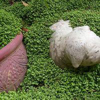 Meglepő kerti dekorációk