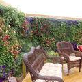 Kültéri falikertek - avagy hogyan használjuk ki minden helyet a kertben