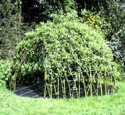 willowden.jpg