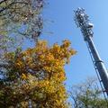 A 4G-ben egyesül a Telekom és a Telenor