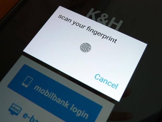 kh_fingerprint.jpg