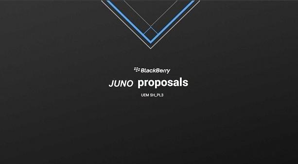 junoproposals.jpg