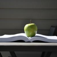 Egészségtudatosság: évtizedes a lemaradásunk