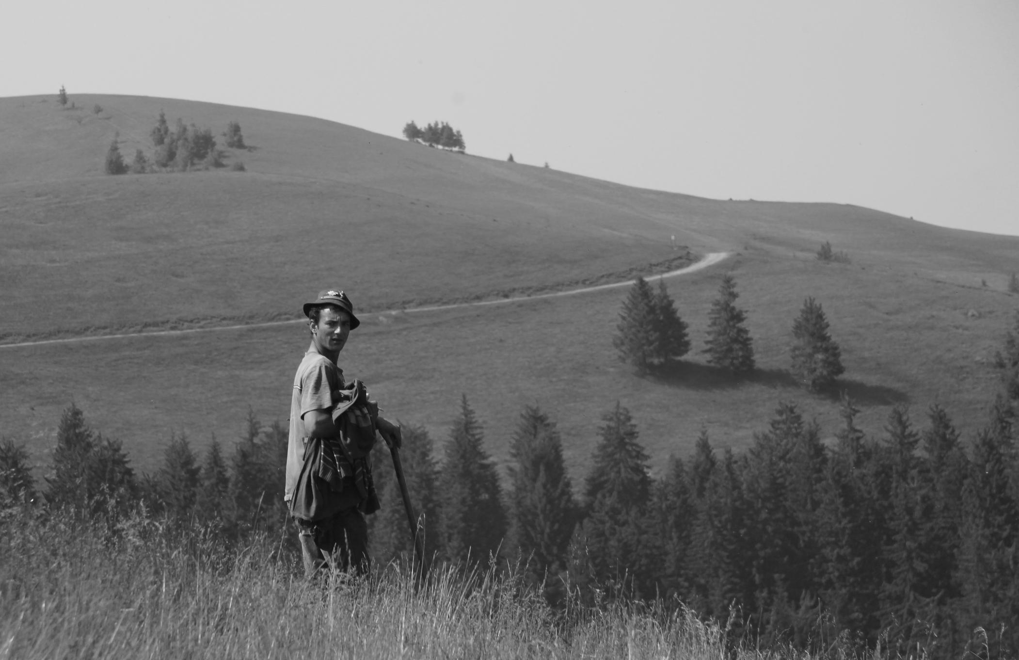 Magyar pásztor a Szellő-hegyen