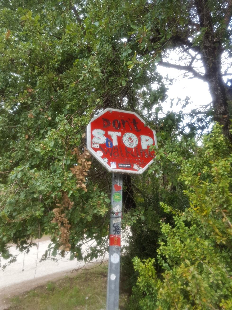 mp_don_t_stop_walking.jpg