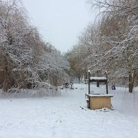 Hó alatt pihen a kert