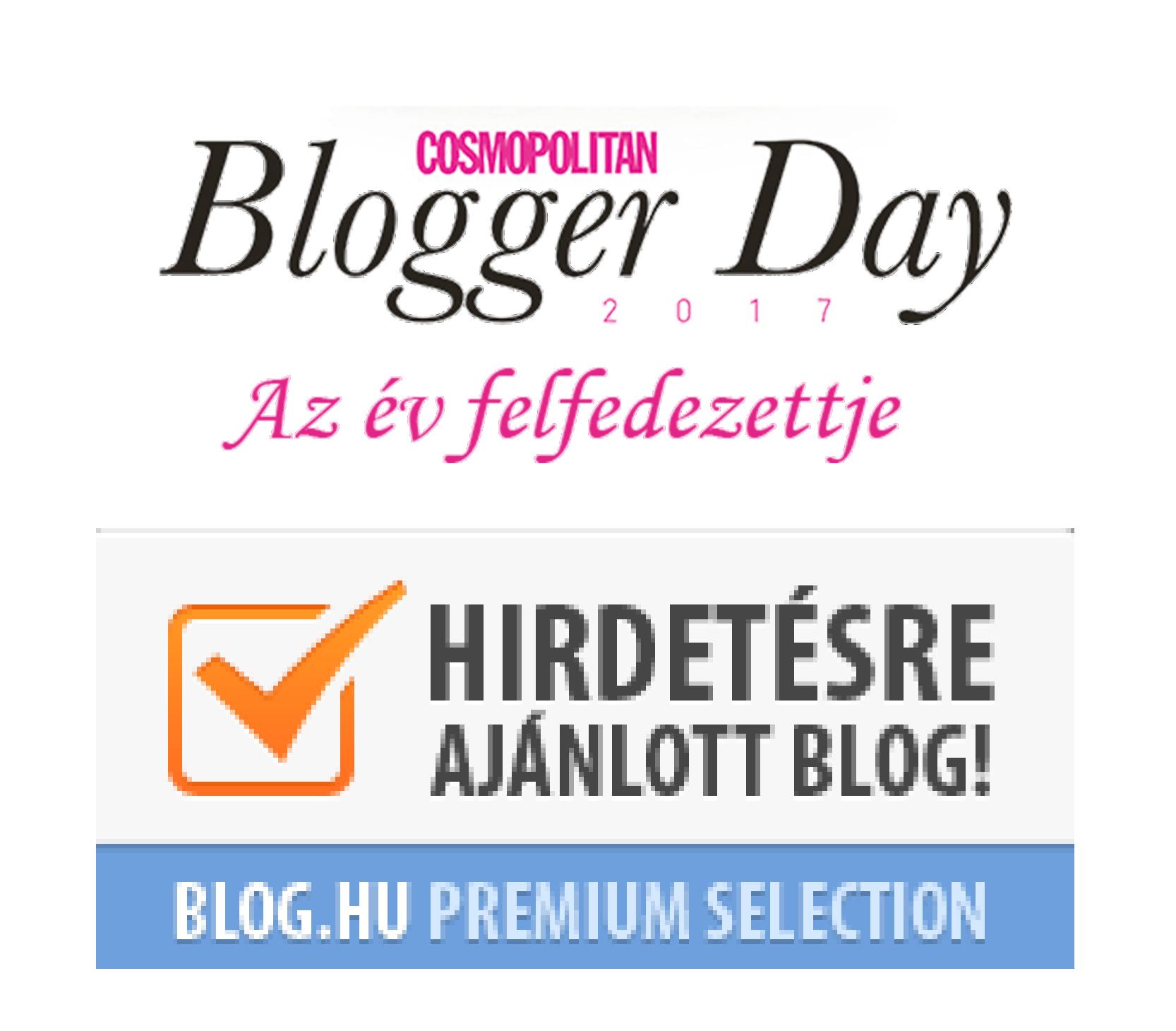 blogozine.png