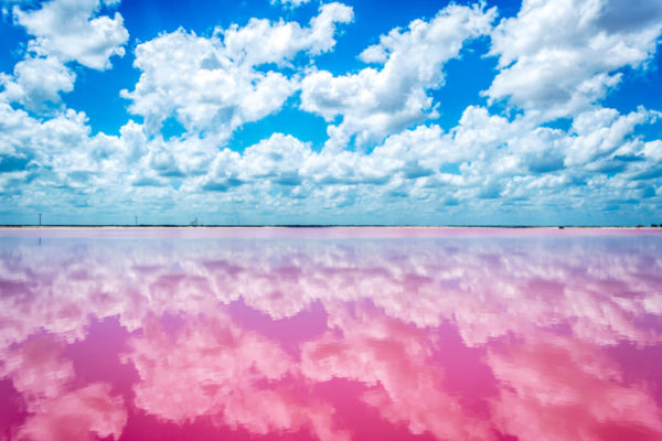 las-coloradas-la-playa-rosa-de-yucatan-en-mexico-600x400.jpg