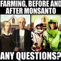 Organikus fejlődés? - United Natural Foods