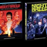 Nightbreed - Az éjszakai szülöttei (Import ajánló)