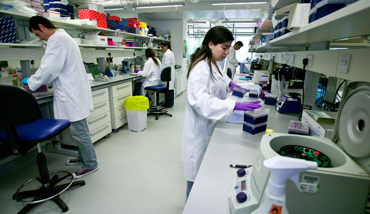 working-in-the-lab-753-435.jpg