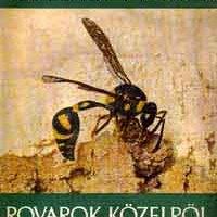 Móczár László: Rovarok közelről.