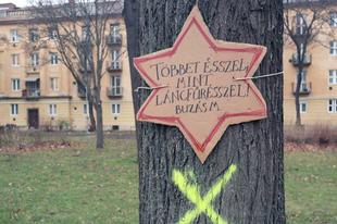 Értelmetlen pusztítás készül Győrben: Semmi nem teszi indokolttá a Malom-liget fáinak kivágását
